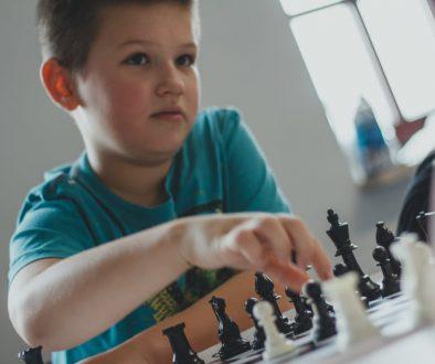 szachy ełk